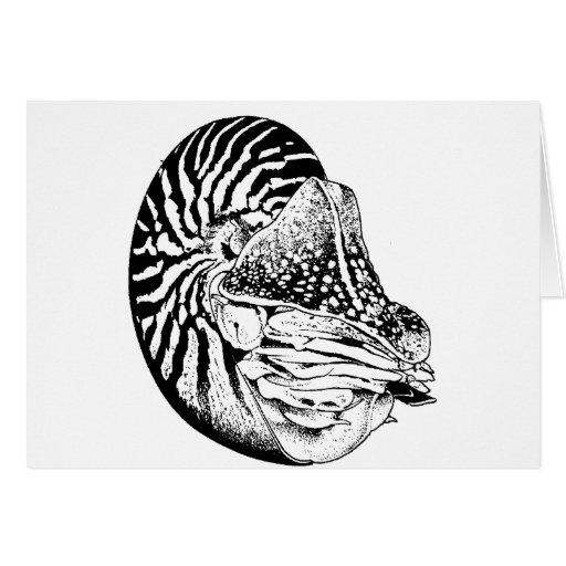 Animal de mar tarjeta de felicitación