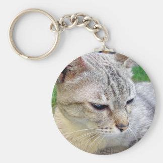 Animal de mascota del gato llaveros personalizados