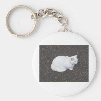 Animal de mascota del gato llavero personalizado