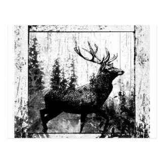 Animal del blanco del negro de los ciervos del mac tarjeta postal