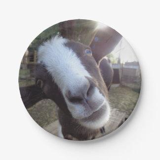 Animal del campo del corral de la cabra platos de papel