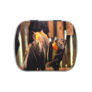 animal del critter de la pintura del palo que se frascos de caramelos