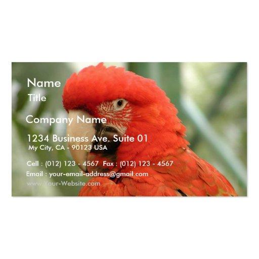 Animal del loro tarjetas de visita