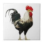 Animal del personalizar del pollo del gallo del vi azulejo cuadrado pequeño