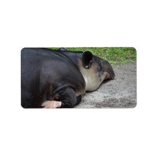 animal del tapir el dormir del critter trasero del etiquetas de dirección