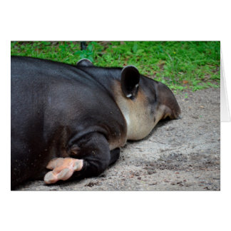 animal del tapir el dormir del critter trasero del tarjeta pequeña
