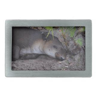 animal dormido sano del tapir hebilla de cinturon rectangular