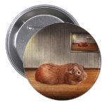 Animal - el conejillo de Indias Pin