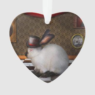 Animal - el conejo - versión reversa