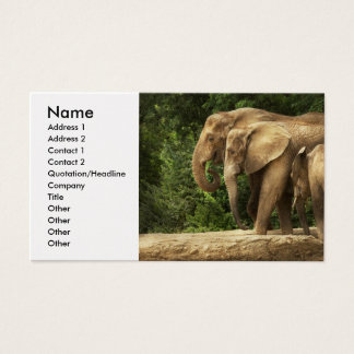 Animal - Elephant - Tight knit family Business Card