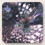 Animal exótico de los pescados posavaso