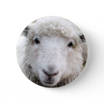 Animal Face Buttons – Sheep