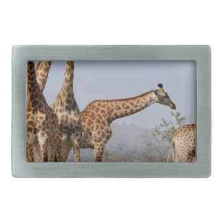 Animal Family - WOWCOCO Rectangular Belt Buckle