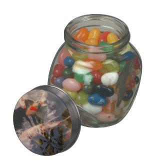 Animal - Fish - Being koi Glass Jar