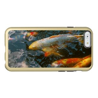 Animal - Fish - Bestow good fortune Incipio Feather Shine iPhone 6 Case