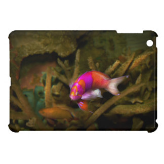 Animal - Fish - Pseudanthias pleurotaenia Case For The iPad Mini