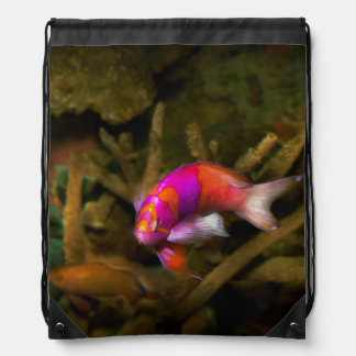 Animal - Fish - Pseudanthias pleurotaenia Drawstring Bag