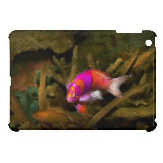 Animal - Fish - Pseudanthias pleurotaenia iPad Mini Covers