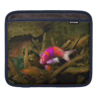 Animal - Fish - Pseudanthias pleurotaenia Sleeve For iPads