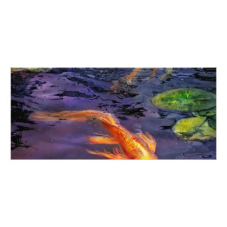 Animal - Fish - There s something about koi Rack Card Design