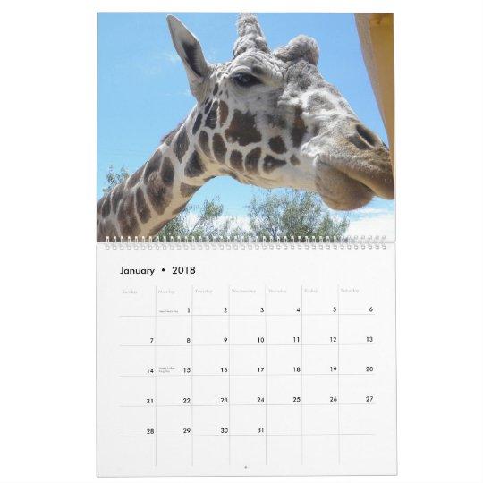 Animal Fun Calendar