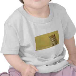 Animal - gatito curioso del bebé camiseta