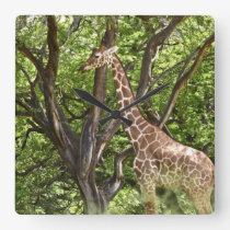 Animal Giraffe Wall Clock