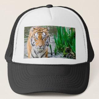 Animal, hat, for sale ! trucker hat