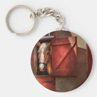 Animal - Horse - Calvins house Key Chain