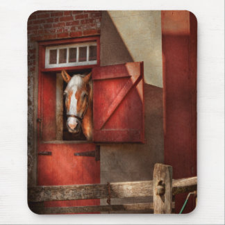 Animal - Horse - Calvins house Mouse Pad