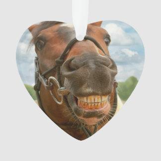 Animal - Horse - I finally got my braces off