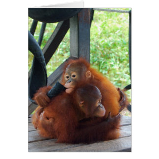 Animal Hugs Orangutan Baby Greeting Card