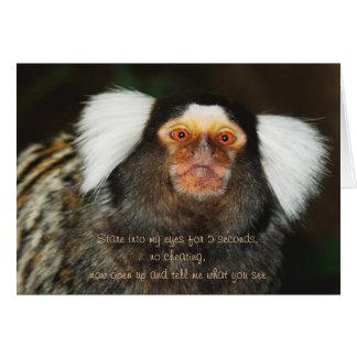 Animal humor funny birthday greeting card
