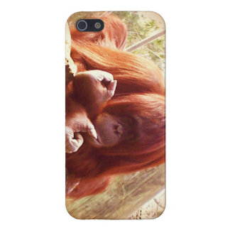 Animal  I phone case