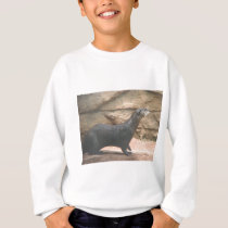 Animal in Oklahoma City Photo Sweatshirt