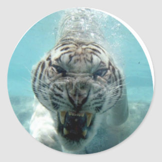 ANIMAL INSTINCTS LOGO CLASSIC ROUND STICKER