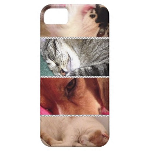 Animal Iphone5 Cell Phone Case iPhone 5 Cases : Zazzle