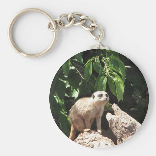 Animal Keychains