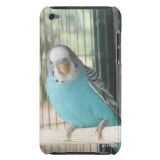 Animal Kingdom HD iPod Touch Case - Blue Bird