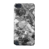 Animal Kingdom HD iPod Touch Case - Pigeon