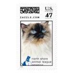Animal League Stamps