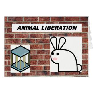 Animal liberation notecards card