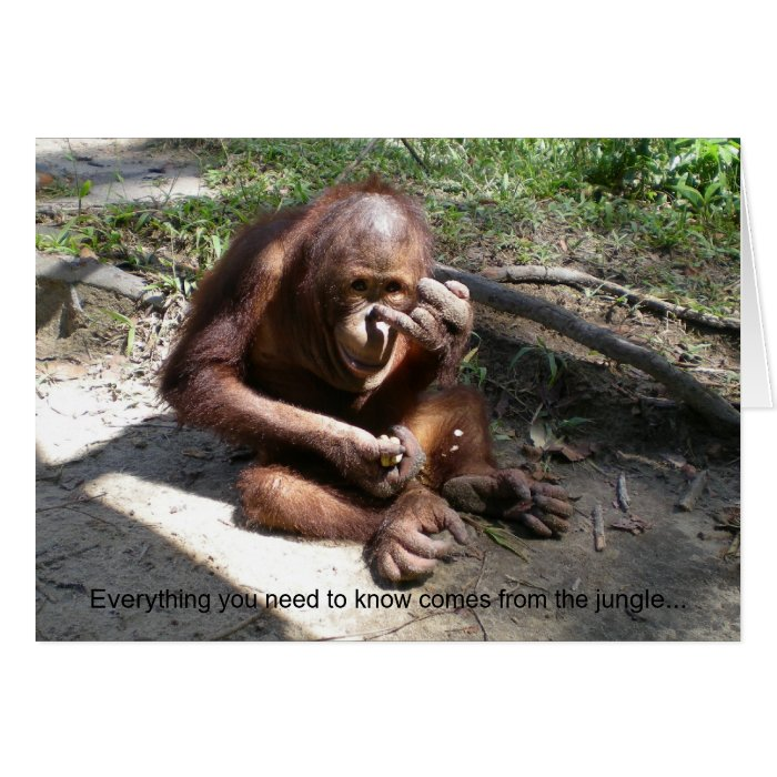 Animal Life Lessons #1 Greeting Cards