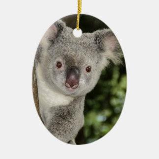 Animal lindo del oso de koala de Australia Adorno Navideño Ovalado De Cerámica
