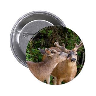 Animal Love Deer Bucks Button