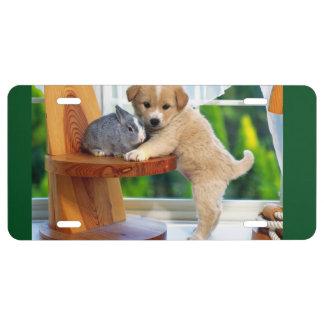 Animal Love License Plate