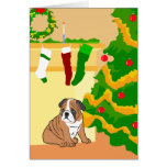 Animal Lover's Christmas Cards