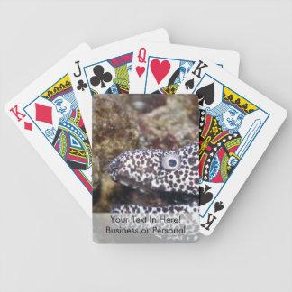 animal manchado del acuario del derecho de la angu baraja cartas de poker