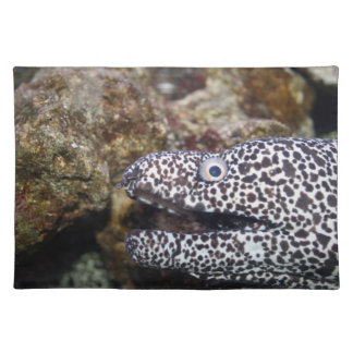 animal manchado del acuario del derecho de la angu manteles