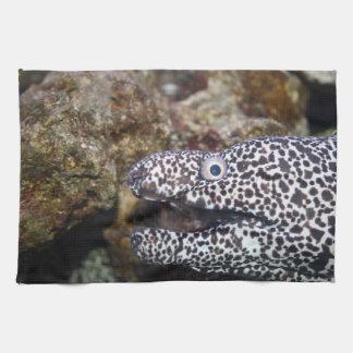 animal manchado del acuario del derecho de la angu toalla de cocina